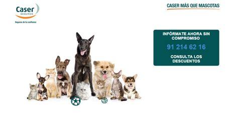 caser hogar atencion al cliente seguro de mascotas caser m 225 s que mascotas