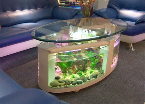 Top 7 Cool Fish Bowls and Tanks   Amy Vansant   Author