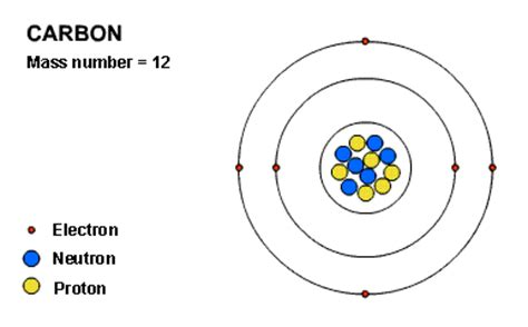 Carbon Number Of Protons by Diagram Of Protons Neutrons And Electrons