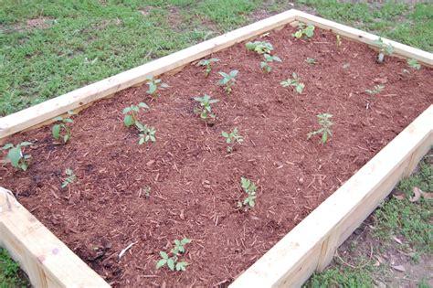 best soil for raised vegetable garden beds raised garden beds soil 28 images raised bed vegetable