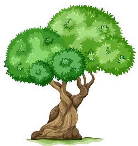 trees clipart oak tree tree clip free clipart images clipart image 2
