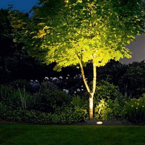 outdoor tree lights best 25 outdoor tree lighting ideas on