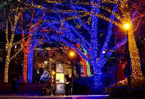washington dc zoo lights national zoo lights zoolights 2017 lights at the