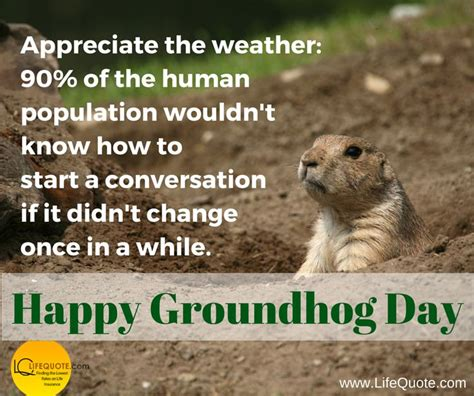 groundhog day keep the talent happy 86 best graduation images on graduation high