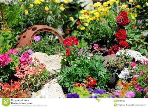 flower garden photo flower garden background stock photo image 55786169