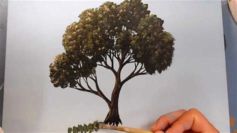 paint tree how to paint a tree in acrylics