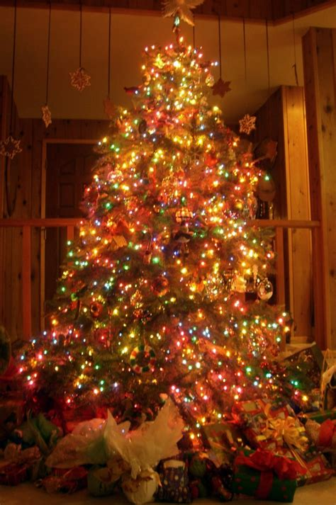 complete tree decorations tree complete decorations 50 images how to make the