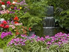 flowers for home garden beautiful nature flowers garden wallpaper