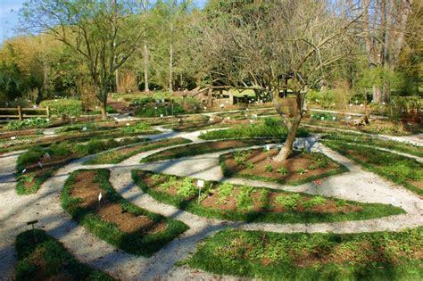 Botanical Gardens Gainesville by Kanapaha Botanical Gardens