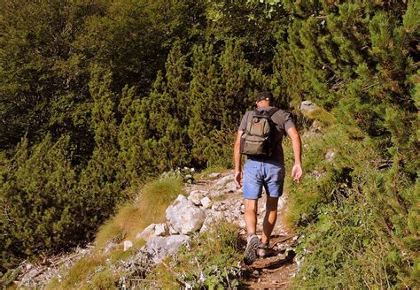 Free photo: Walk, Hiking, Mountain, Trail, Man   Free Image on Pixabay   1648114