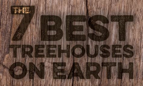 best treehouses infographic the 7 best treehouses on earth inhabitat