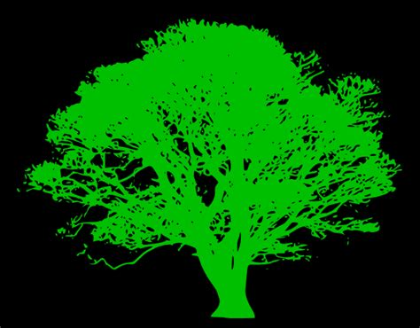 tree on black background tree green silhouette black background clip at clker