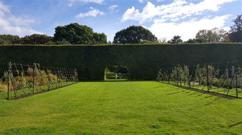 edinburgh botanic gardens restaurant royal botanic garden edinburgh last days of summer