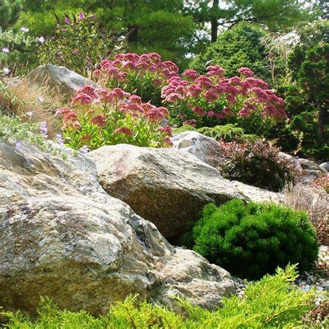 images of rock gardens low water rock gardens hgtv