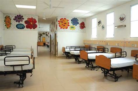 paint colors for veterinary clinic work for hospital gurgaon interiors designers