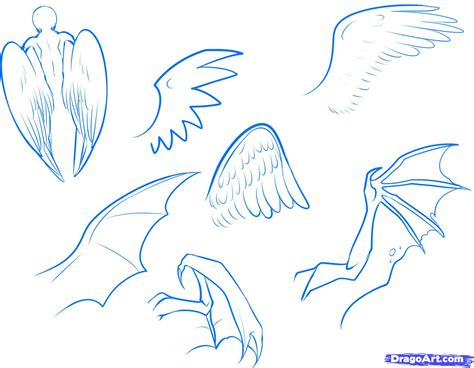 how to draw anime how to draw an anime bat step by step anime animals anime