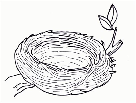 coloring book pictures top 85 nest coloring pages free coloring page