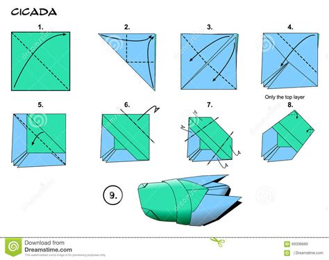 origami cicada origami cicada steps stock illustration image 69306680
