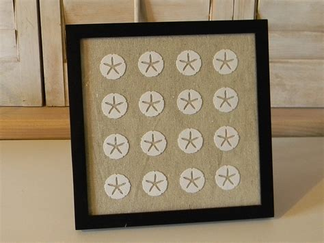 sand dollar craft projects framed sand dollar wall organize and decorate everything