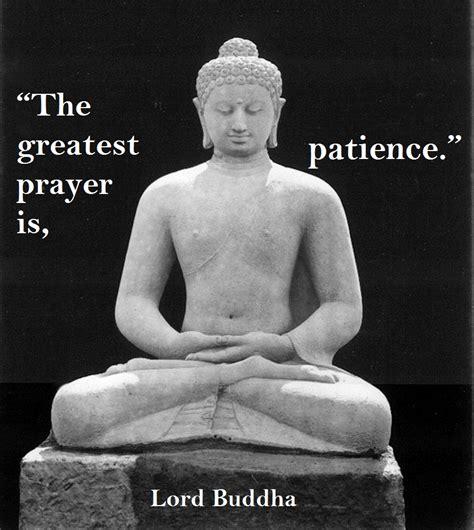buddha prayer buddha animal quotes quotesgram