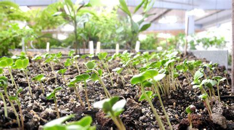 Garten Der Diaspora by Garten Der Diaspora Atelier Le Balto Le