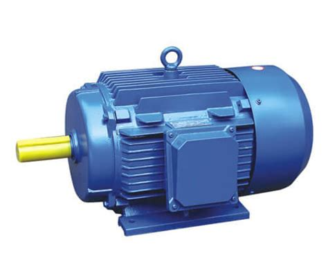 Induction Motor by Squirrel Cage Rotor Induction Motor Hordu Motors