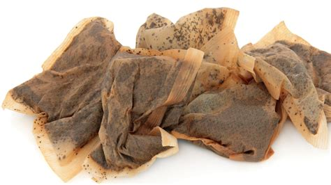what are used for here s why you should not throw away used tea bags
