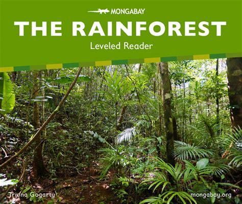 rainforest picture books the rainforest leveled reader kindergarten
