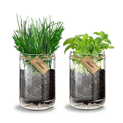 herb garden indoor 9 best indoor herb gardens in 2017 indoor gardens for