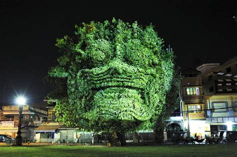 haunting 3d projections on trees by clement briend bored