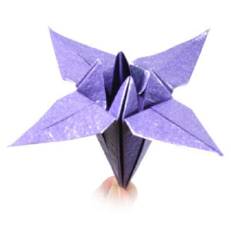 origami iris how to make a traditional origami iris flower flickr