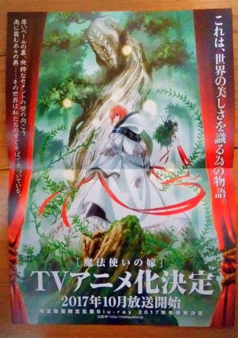 the ancient magus vol 3 new anime the ancient magus tv anime announced for