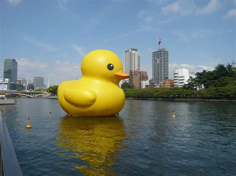japanese rubber st duck to make its return the japan times