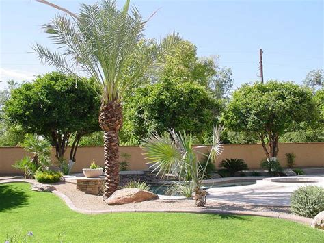 large backyard landscaping large backyard design with desert landscaping themes
