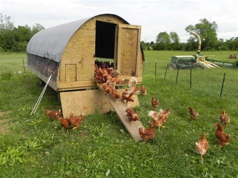 backyard chicken houses chicken coop ideas designs and layouts for your backyard