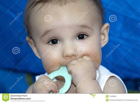 baby chew baby chewing a toothing royalty free stock image