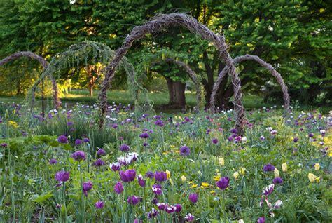 Garden Arch Vines Go 30 Plants For A Naturalistic Planting Design