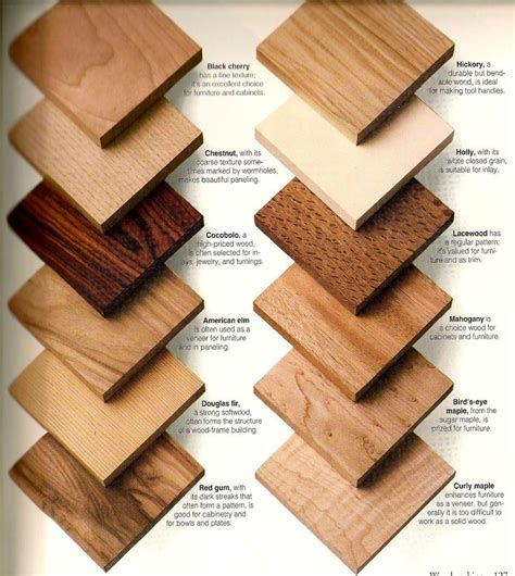 lumber for woodworking 87 best wood species images on wood wood