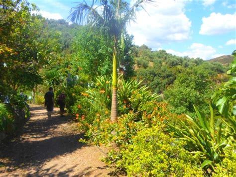 Der Garten Mehrzahl by Der Botanische Garten Kreta Beschreibung Rundweg