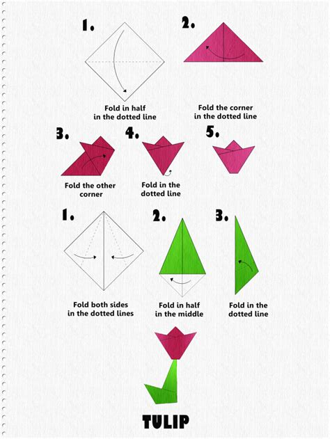 origami tulip easy how to make an origami tulip step by step tutorial