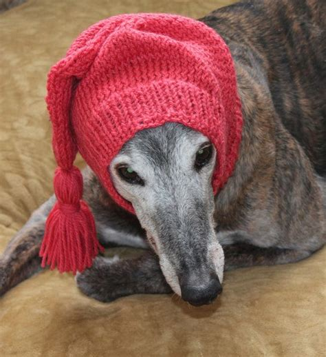 greyhound knitted hat pattern 23 best images about greyhound snoods on for