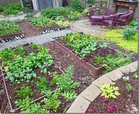 what to plant in raised vegetable garden how to plant a shade raised vegetable garden bed year