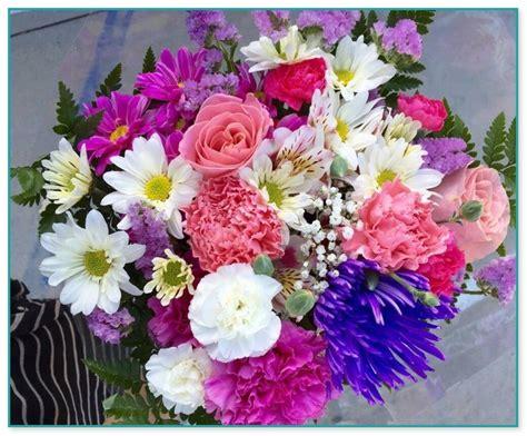 garden grove flowers flowers for shady gardens