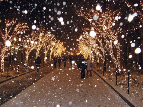 lights and snow where thou cheer bwog