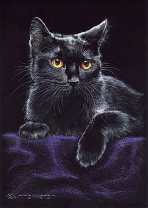 black cat painting designs 1000 ideas about black cat painting on cat