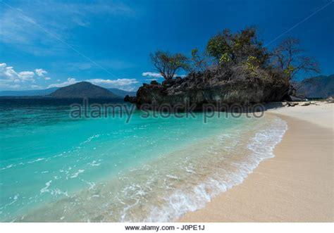 Black Kitchen Islands alor stock photos amp alor stock images alamy