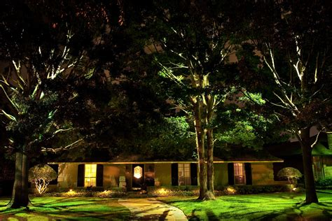 landscape lighting for trees designing with leds landscape lighting supply company
