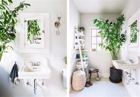 la fabrique 224 d 233 co des plantes dans la salle de bain inspiration et conseils