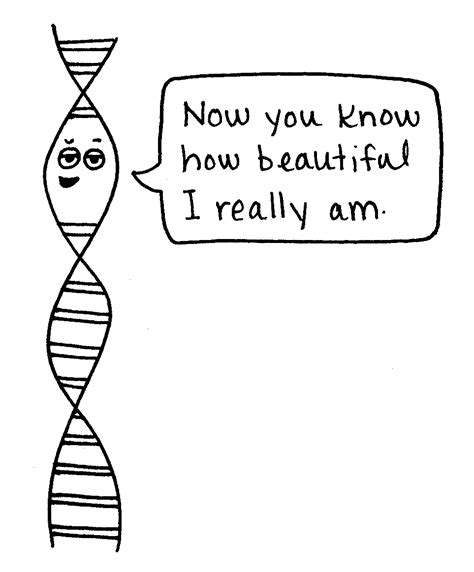 Cartoons help make basic genetics fun   Science News for ... Genetics Jokes