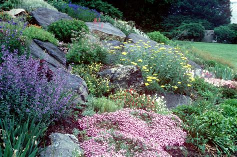 pictures of rock gardens maher greenwald slopes and rock gardens gallery